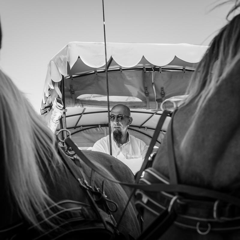 caleche-cheval-saint-hilaire-d'ozilhan-gard